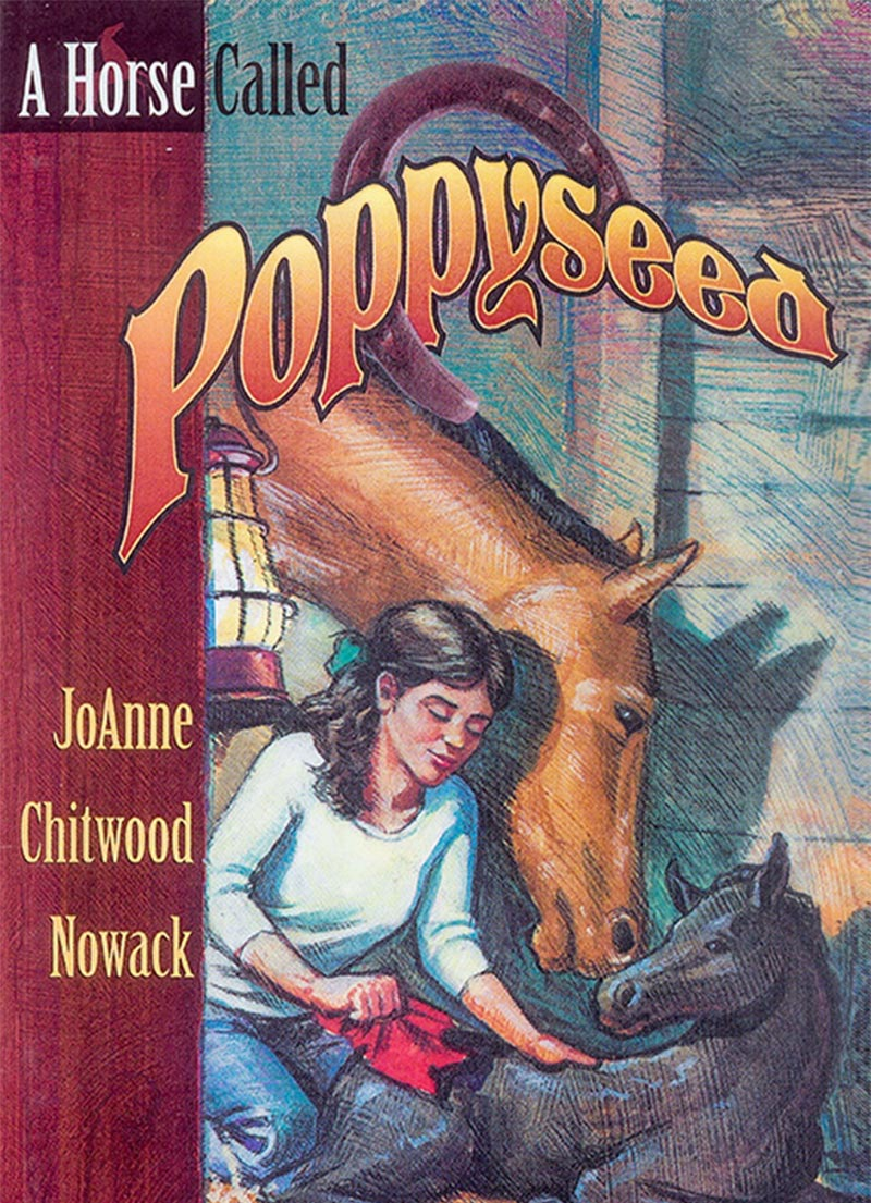 A Horse Called - Christian Story Books