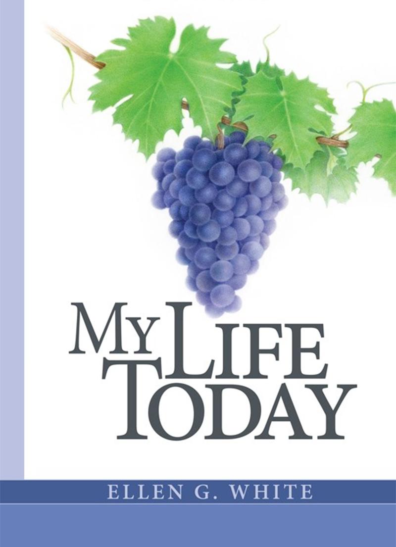 My Life Today - LifeSource Christian Books