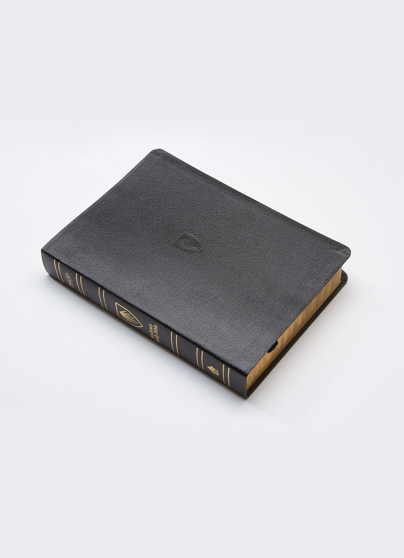 NKJV Andrews Study Bible (Genuine Black Leather)