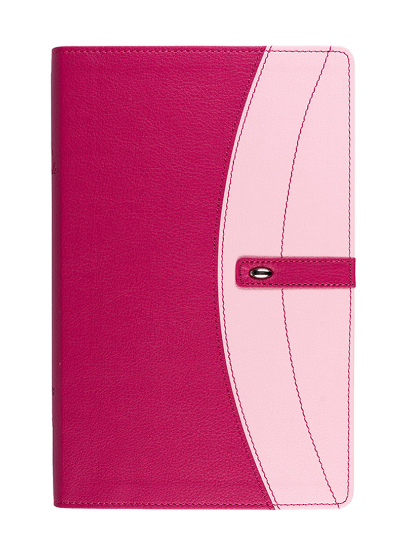 NIV Pink Holy Bible - Bibles - LifeSource Bookshop